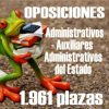 Administrativos y Auxiliares Administrativos del Estado: 1.961 plazas